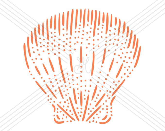 Scallop · Hand-drawn vector illustration