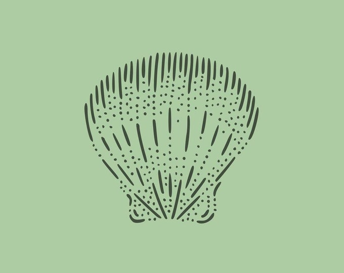 Scallop · Hand-drawn vector illustration