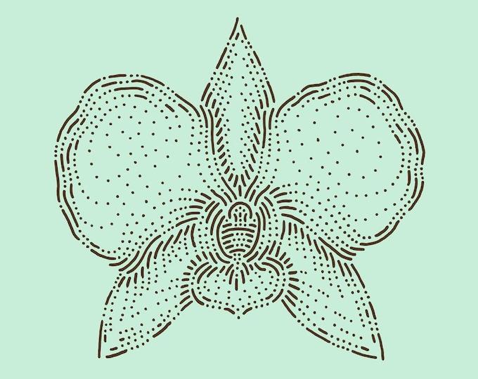 Orchid · Hand-drawn vector illustration