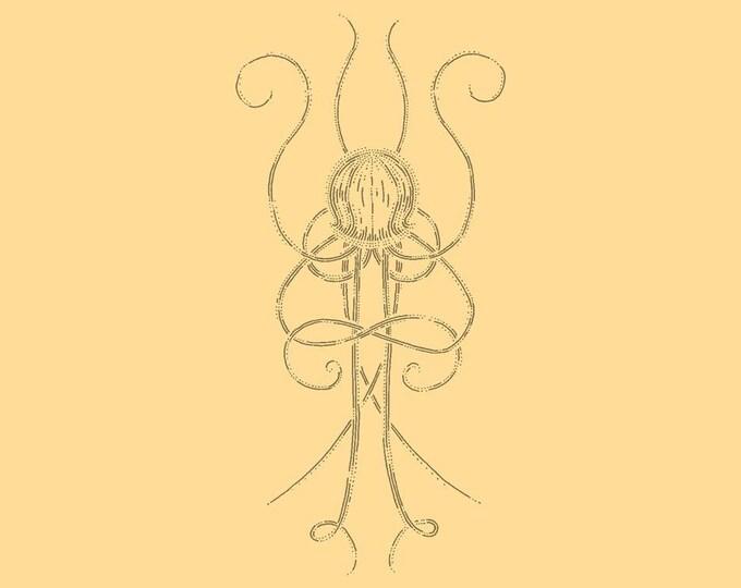 Jellyfish · Hand-drawn vector illustration