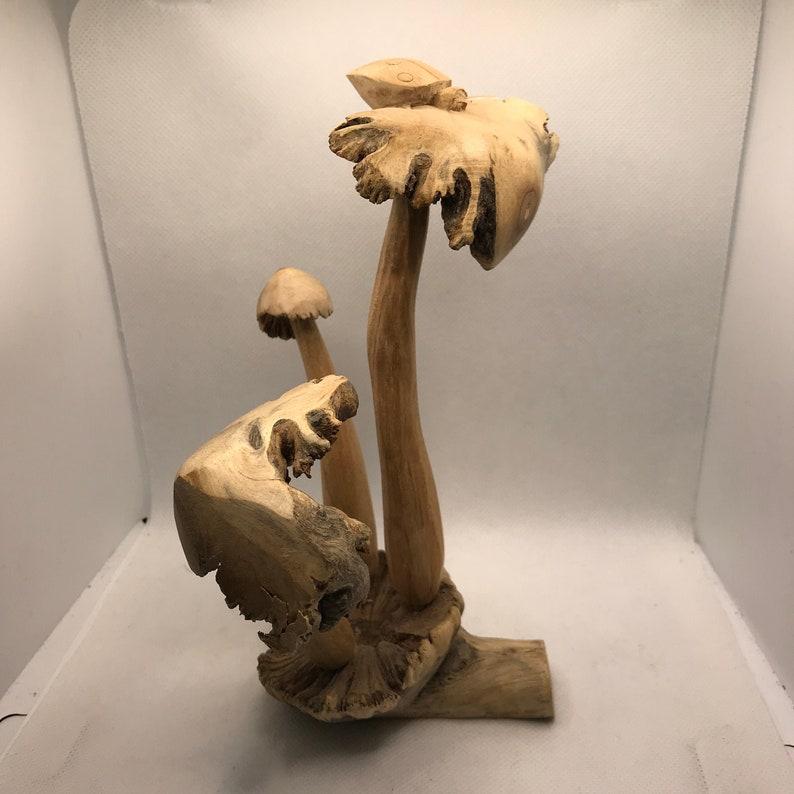 Hand Carved Parasite mushroom with lady bug