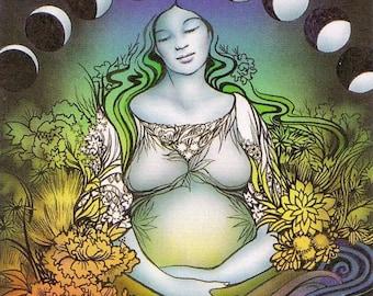 Same Day - Conception & Gender Fertility Reading