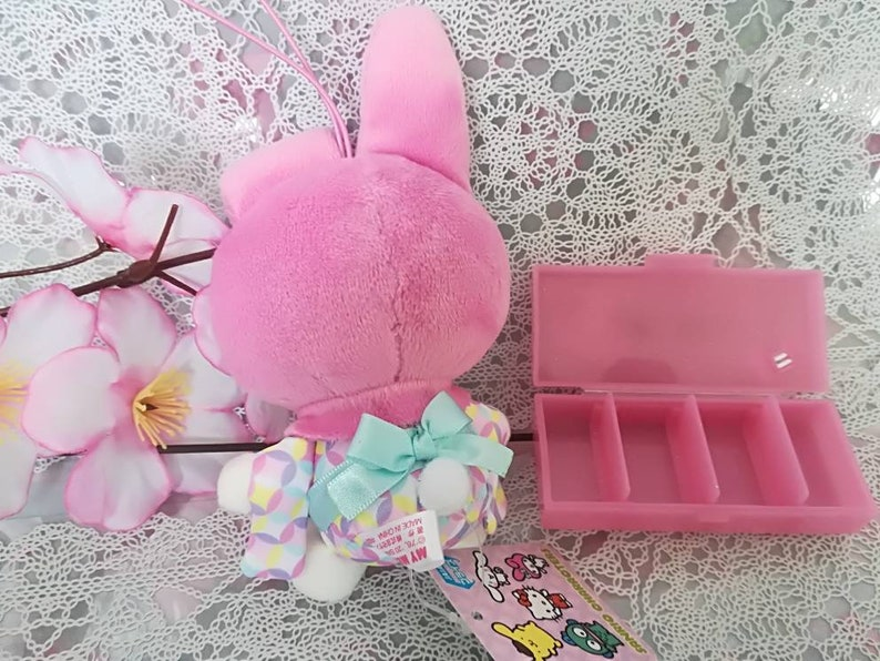 Collection Kawaii Only One Available Sanrio My Melody and Plastic Case From Japan