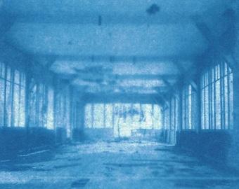 EXclus_1 / Cyanotype Photography
