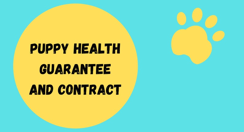 Puppy Health Guarantee and Contract-Contract-Pets-Health image 0