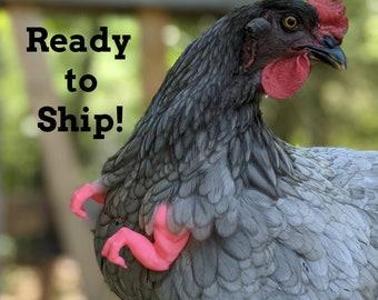 Chicken T Rex Arms SALMON Chicken Arms, Chicken Dinosaur Arms, Chicken Photo Prop