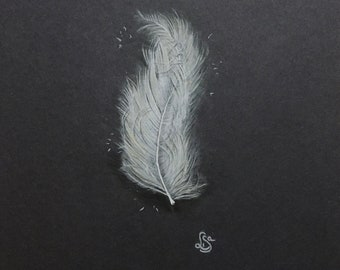 Angel feather - signed pencil drawing on A4 black paper - feather measures 12cm high - unframed