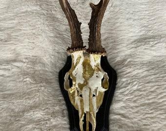24ct Gold leaf on real Roe Deer