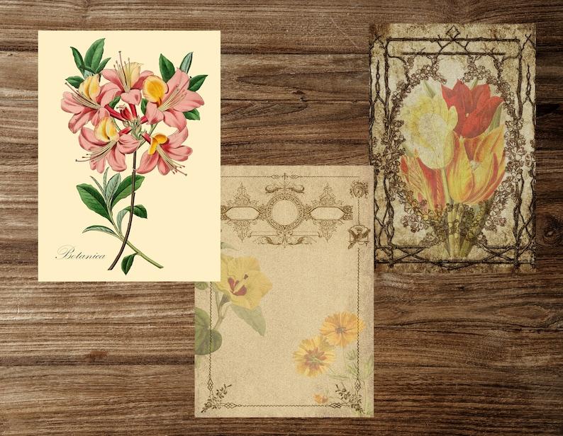 Paper Crafts,Digital download Scrapbooks Botanical Herbs Printable Pages for Junk Journals Book pages Junk journal printable kit