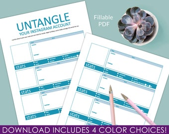 Instagram Planner/Instagram Stat Sheet/Editable PDF/Social Media Planner/Digital Download
