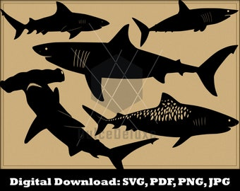 Sharks SVG Bundle - Shark Cut Files for Silhouette - Shark Clipart- Vector Instant Download - Great White Mako Hammerhead Bull Tiger Shark
