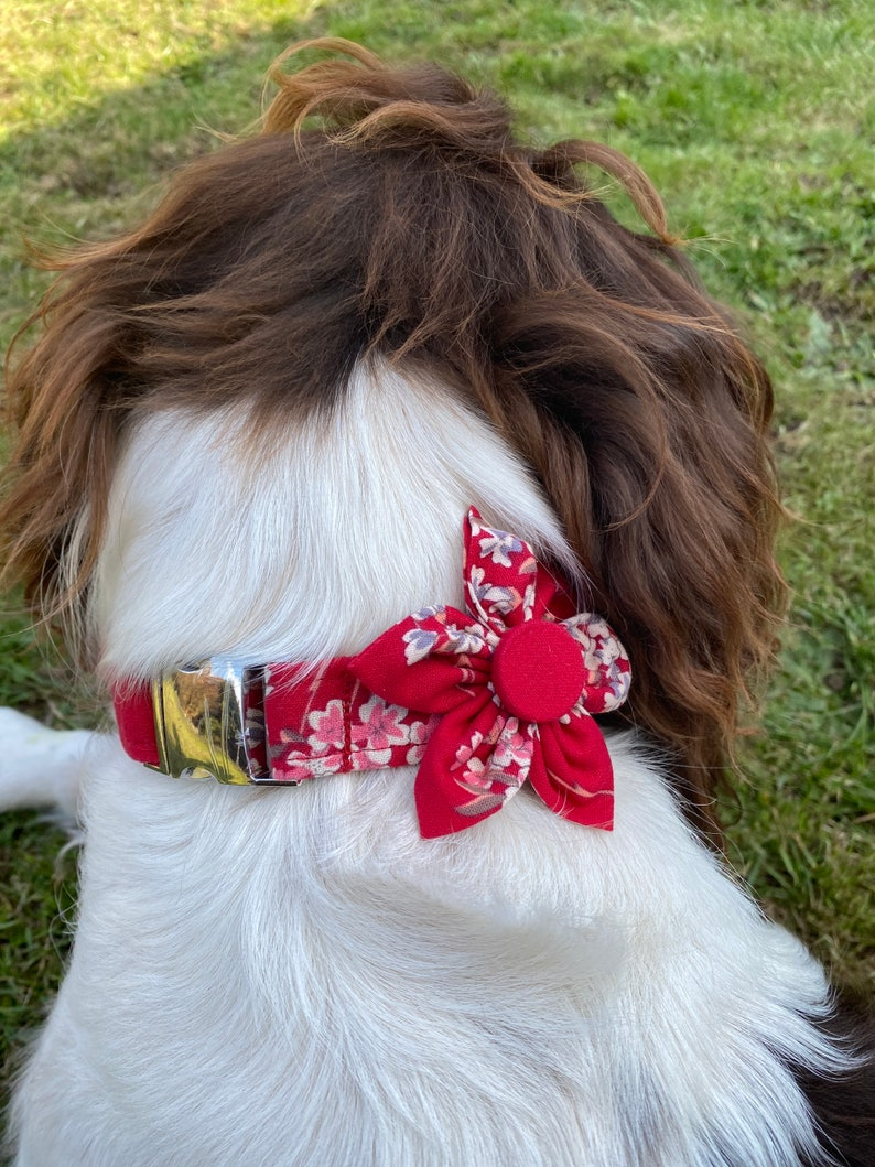 Red floral cotton print Dog collar set. Collar flower Limited edition Dog pendant Dog collar with pendant and handmade removable flower