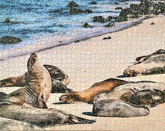 Nature puzzle. 1000 piece jigsaw puzzle for adults. Unique large scenic Galapagos sea lion on the beach animal photo puzzle. Nature photo