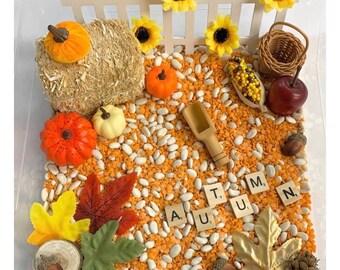 Fall Sensory Bin, Fall Sensory Kit, Fall Sensory Filler, Thanksgiving Sensory, Halloween Sensory Bin, Pumpkin Sensory Bin