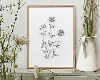 Botanical Art, Flowers, Herbs,  Black and white Artwork, Wall Art, Modern Home Decor, Scandinavian, Nature Art, Gift