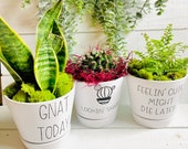 Funny 6 in Planters, Plant Mom Gift, Punny Plant Pots, Looking Sharp, Gnat Today, Feeling Cute Might Die Later, Ceramic Pot with Vinyl