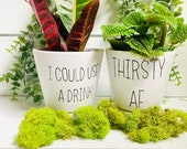 Funny Plant Pots, succulent plant container, thirsty AF, I could use a drink, plant mom gift, 4 inch white ceramic pot w drainage, gag gift