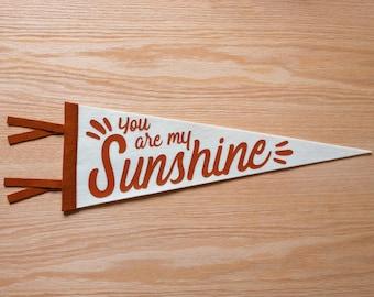 You Are My Sunshine - Burnt Orange Felt Banner Wall Hanging - Boho Style
