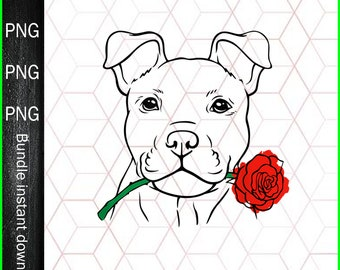 DC Fans Printable Sublimation Transfer PNG Digital File Funny Pitbull Lover Pitbull League Digital File Download Pitbull Collabs DC Comic