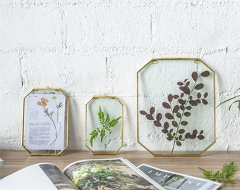 Wall Hanging Long Octagon Herbarium Brass Glass Frame for Pressed Flowers Dried floating Frame