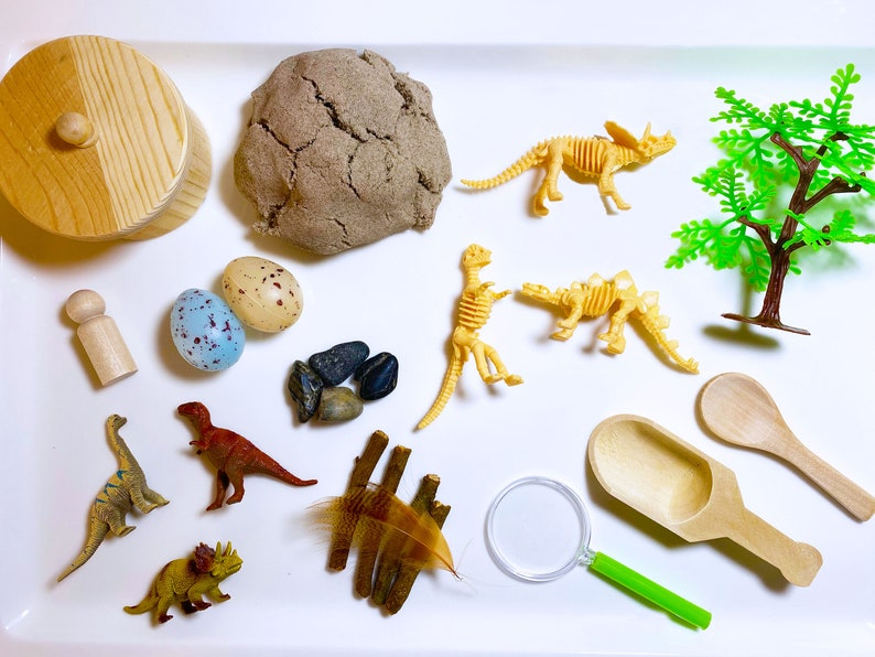 Imaginative Play Dinosaur Dig Sensory Bin Birthday Gift for Kids Dinosaurs Sensory Tray Activity Set Learning Tools for Toddlers