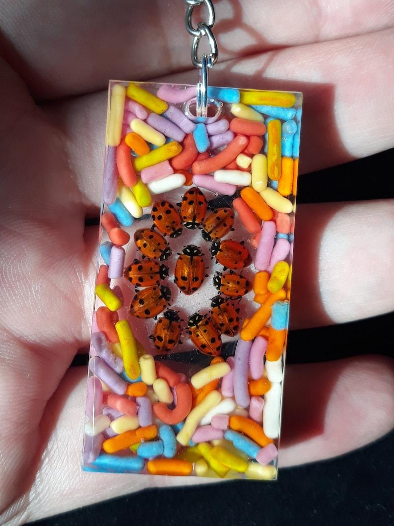 Rainbow Sprinkle Lady bug key chain AND MYSTERY PRIZE!