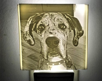 Custom Dog Pet Photo Nightlight