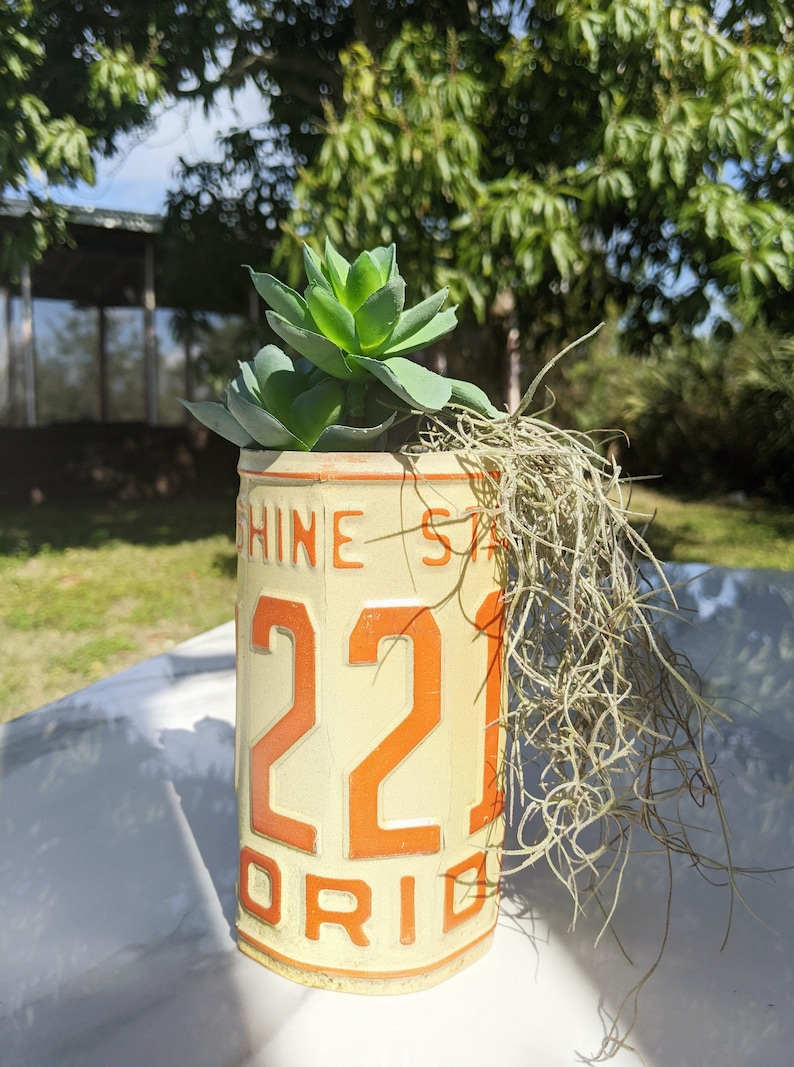 License Plate Planters