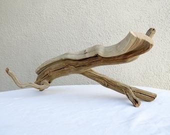 Curvy Piece of Freestanding Trimmed Manzanita Driftwood Branch Some Bark Small