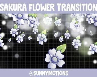Purple Sakura Flower Animated Twitch Scene Stinger Transition - Kawaii Cherry Blossom / Twitch Overlay / Stream Graphics / Streamer / Stream