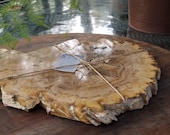 Petrified Wood Slab Great for Charcuterie Board Cheese Board Display for other Crystals & Minerals