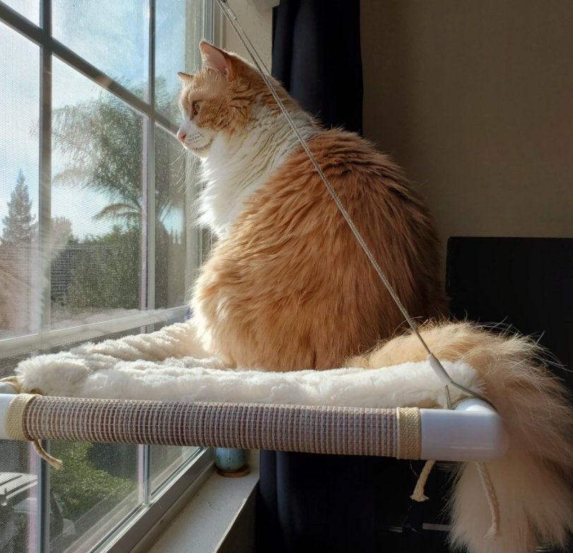 Cat Window Perch Extra Large and Sturdy Holds Two Large Cats – Easy to Assemble