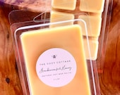 FRANKINCENSE HONEY 100 natural soy wax melts - eco friendly candles - hand poured - highly scented wax tarts - wax warmer melts - you pick