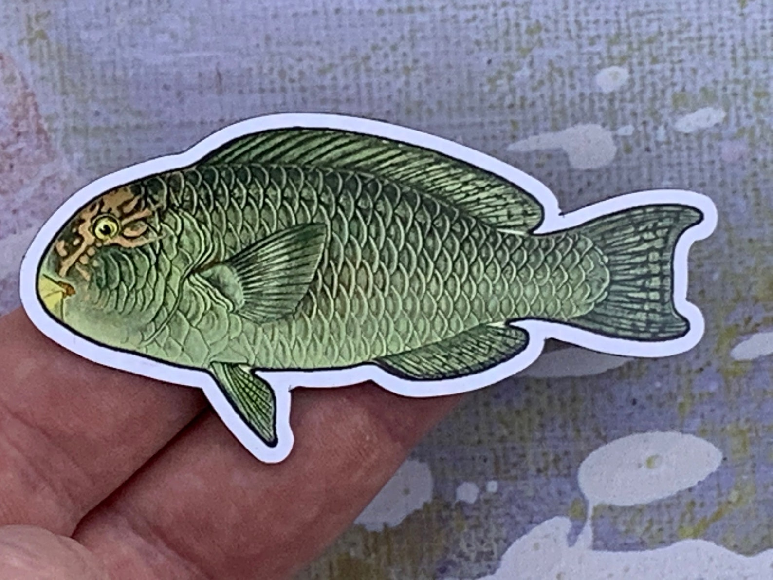 Photo of a reefcrest parrtofish magnet in someone's hand