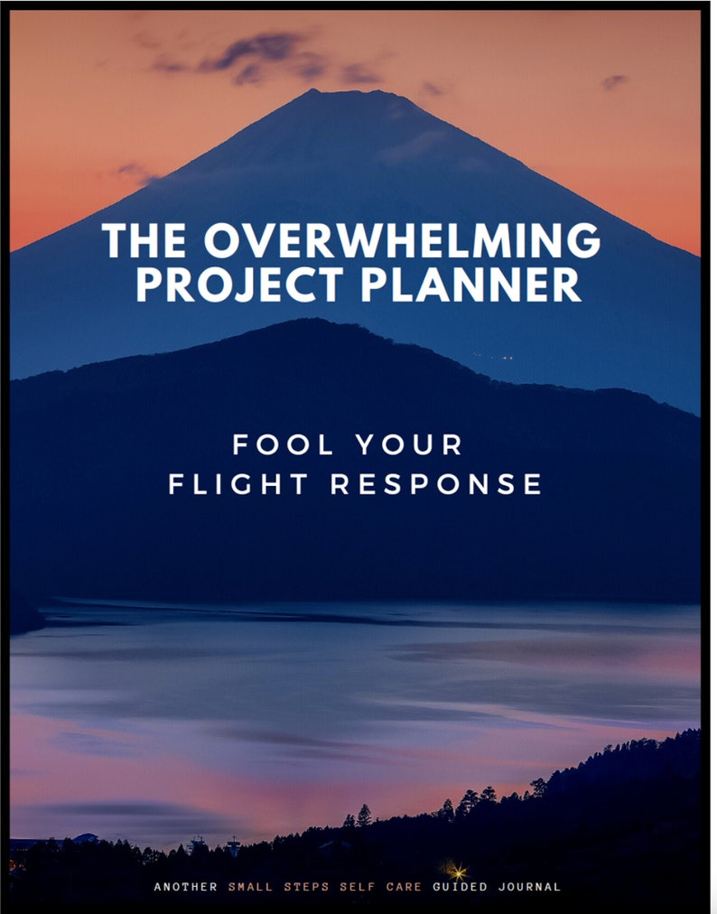Small Steps: The Overwhelming-Project Planner/Fool Your Flight image 0