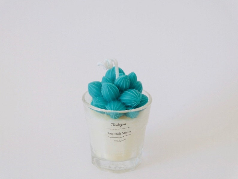 Mini Cactus Candles100/% Natural Essential OilCandle gift Home decor Plant based candles Custom candle decorated candles