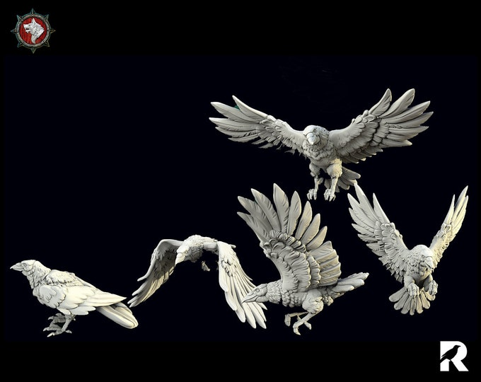 Raven Set of Five   4K RESIN 3D Printed Tabletop Miniature for Role-playing Games and Collector Displays   White Werewolf Tavern