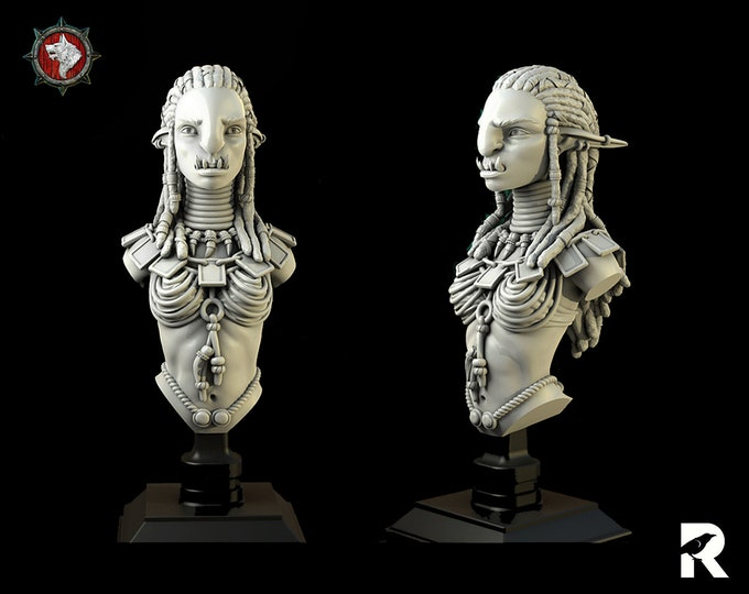 Troll Female Bust   4K RESIN 3D Printed Tabletop Miniature for Role-playing Games and Collector Displays   White Werewolf Tavern