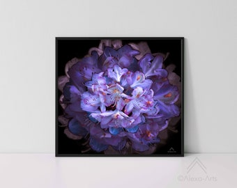 """Unique Floral Wall Giclee Art Print """"Opulence"""", Photography, Watercolours, Digital pencil"""