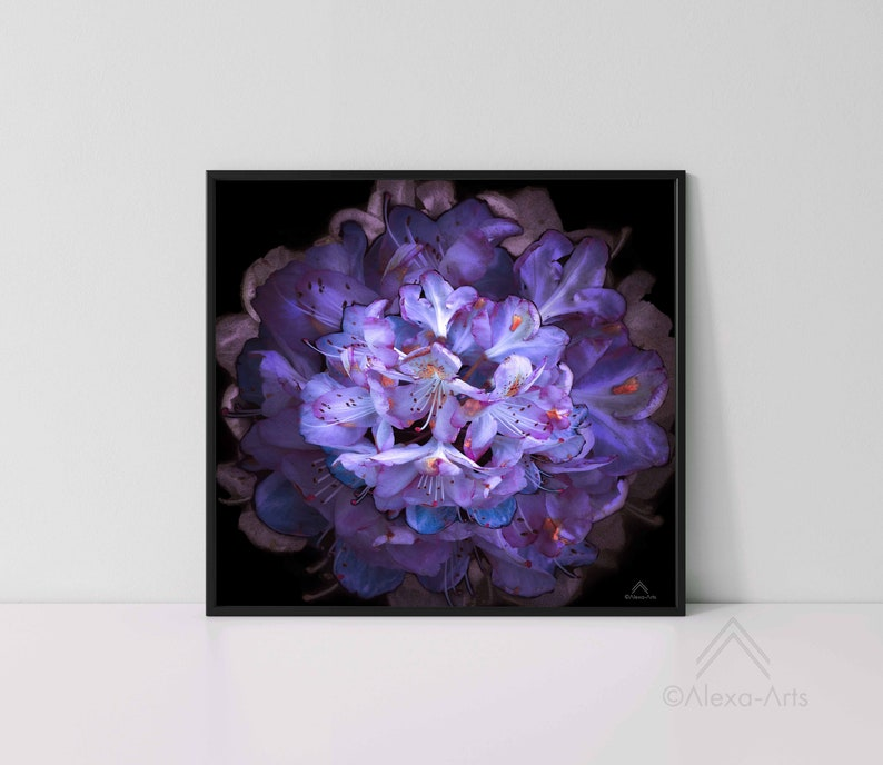Unique Floral Wall Giclee Art Print Opulence image 0