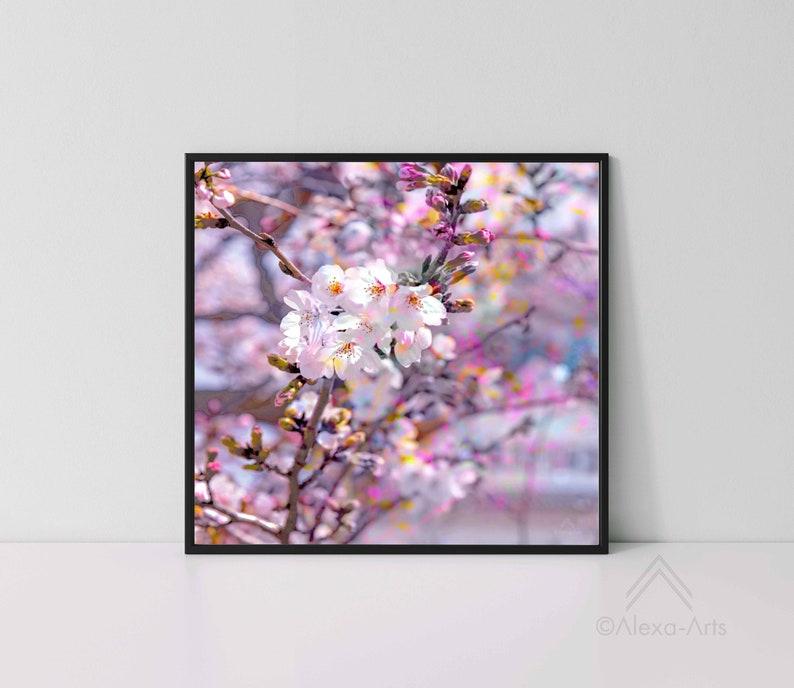 Unique Floral Wall Giclee Art Print Sakura Splash image 0