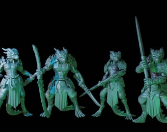 Set of 4 - Dragonborn Male and Female Fighters with Great swords