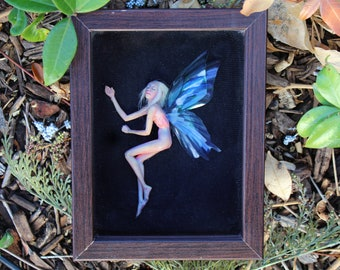 Dormant Faerie in Shadowbox