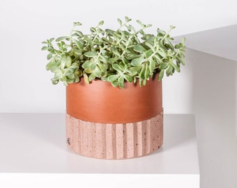 """Tepalcate Terracotta Glazed Clay and Stone Planter Pot. 6"""" Planter with drainage hole and stone base. Indoor Outdoor Planter Flower Pot."""