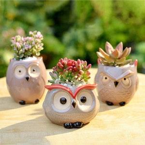 Small raised plastic planter Vintage white plastic urn with two cherubs Air plantcactus display planter. Kitsch cuteness