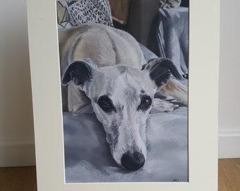Whippet Giclee print, whippet art, whippet print, sighthound Giclee print, sighthound print