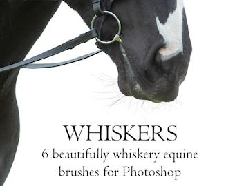 BRUSHES - Whisker brush set 1