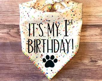 It's My 1st Birthday Rainbow Confetti Tie-On Dog Bandana | birthday pup | first birthday | birthday boy | birthday girl | 1st birthday