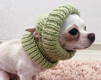 Green sage hat with ear holes for small dog Warm dog hat Light green Spring green MADE to ORDER