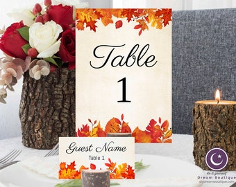 Fall Wedding Place Cards and Table Numbers
